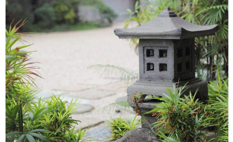 8 DIY Tropical Garden Ideas Must Know