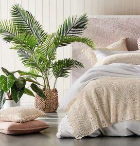 Areca Palm Best Bedroom Plants for Oxygen